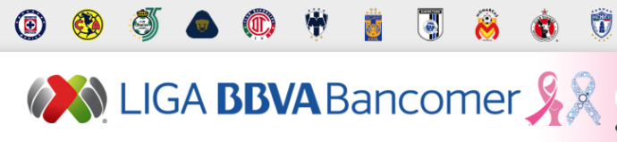 ¿Cómo funciona la Liga MX?